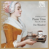 Album artwork for Haydn: Piano Trios 39, 43-45 / Trio Wanderer