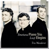 Album artwork for Smetana & Listz : Piano Trios / Trio Wanderer