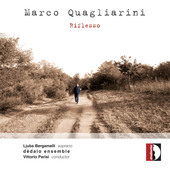 Album artwork for Marco Quagliarini: Rifflesso