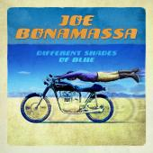 Album artwork for Different Shades Of Blue / Joe Bonamassa