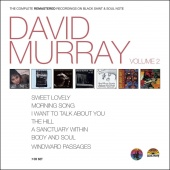 Album artwork for David Murray: Complete Black Saint Vol. 2