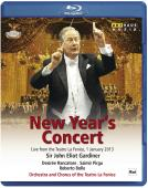 Album artwork for NEW YEARS CONCERT 2013 - Gardiner