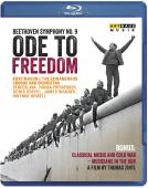 Album artwork for Ode to Freedom (BluRay)