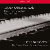 Album artwork for Bach: The Trio Sonatas