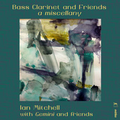 Album artwork for Bass Clarinet & Friends: A Miscellany