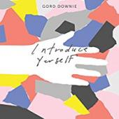 Album artwork for Gord Downie - Introduce Yourself
