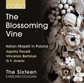Album artwork for The Blossoming Vine: Italian Maestri in Poland / S