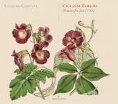 Album artwork for Giovanni Zamboni: Sonatas for Lute