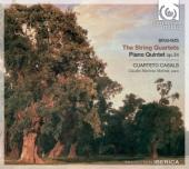 Album artwork for Brahms: String Quartets, Piano Quintet (Casals)