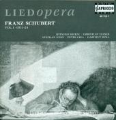 Album artwork for SCHUBERT - LIEDER VOL. 1, OP. 1-24
