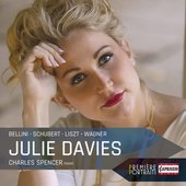 Album artwork for Bellini, Liszt, Schubert & Wagner / Julie Davis