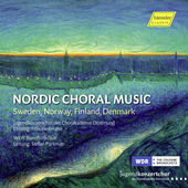 Album artwork for Nordic Choral Music - Sweden, Norway, Finland, Den