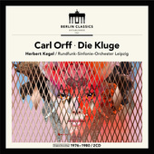 Album artwork for DIE KLUGE
