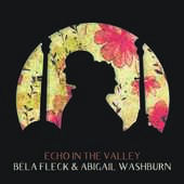 Album artwork for ECHO IN THE VALLEY (LP)