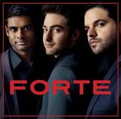 Album artwork for Forte / Forte