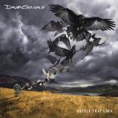 Album artwork for DAVID GILMOUR: RATTLE THAT LO-CK