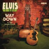 Album artwork for Elvis - Wazy Down in the Jungle Room