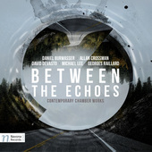 Album artwork for Between the Echoes