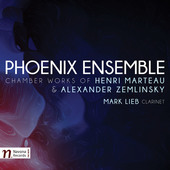 Album artwork for Marteau & Zemlinsky: Chamber Works