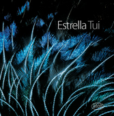 Album artwork for TUI: WORKS FOR TWO PIANOS, E